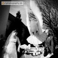 Hochzeit_20090321_426.jpg