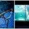 suedafrika_076: Two Oceans Aquarium, Kapstadt